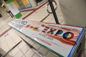 Terno expo