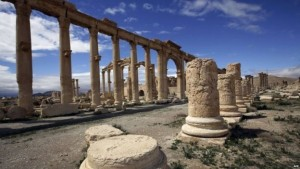 Palmira 36
