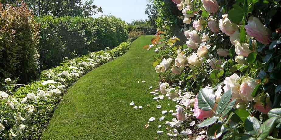Life s simple pleasures mozzafiato - Foto piccoli giardini casa ...